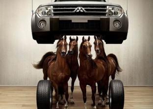 ws_Horse_Power_1600x1200-701x526